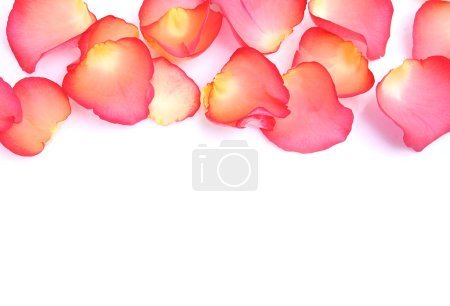 Photo for Rose petals as a symbol of love - Royalty Free Image