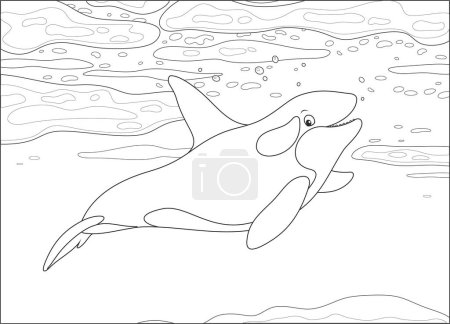 Illustration for Killer whale swimming among drifting ice floes in a polar sea, black and white vector illustration in a cartoon style for a coloring book - Royalty Free Image