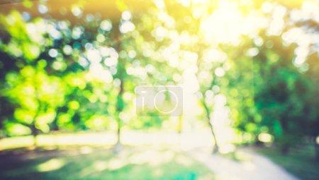 Nature verte extérieure