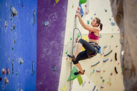 Photo for Photo of athlete girl climbing up purple wall for rock climbing indoors - Royalty Free Image