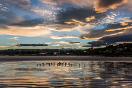 Photo pour Superbe coucher de soleil sur la côte du Pacifique, Nouvelle-Zélande . - image libre de droit