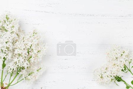 Photo pour Fleurs lilas blanches sur fond bois. Vue de dessus avec espace pour votre texte - image libre de droit