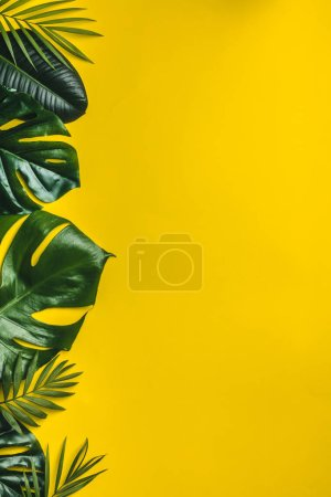 Photo for Tropical leaves on yellow background, minimal concept, flat lay - Royalty Free Image
