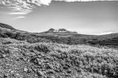 """Постер, картина, фотообои """"Красивые живописные пейзажи исландской природы. Черно белые фото"""""""