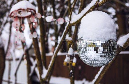 Photo pour Boule disco enneigée sur arbre de jardin . - image libre de droit