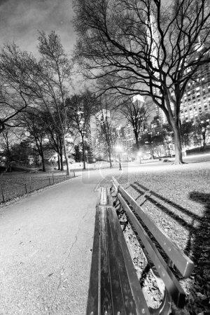 Photo pour Vue de nuit de Central Park avec banc, des arbres et des gratte-ciel, New York City. - image libre de droit