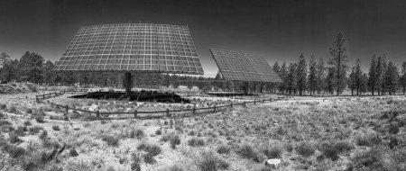 Foto de Vista panorámica de los paneles solares industriales en campo abierto . - Imagen libre de derechos