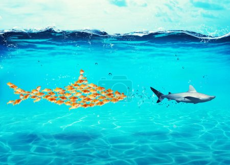 Photo for Big shark made of goldfishes attack a real scared shark. Concept of unity is strength, teamwork and partnership - Royalty Free Image