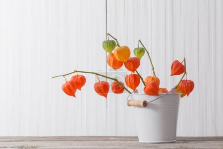 red physalis on wooden table