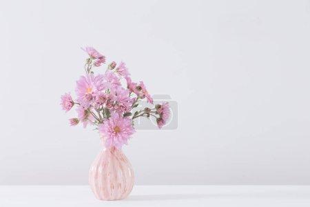 Photo pour Asters roses dans un vase sur fond blanc - image libre de droit