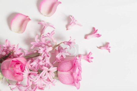 Foto de Flores rosas sobre fondo blanco - Imagen libre de derechos