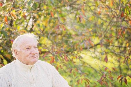 Photo pour Portrait d'un homme âgé dans un parc ensoleillé - image libre de droit