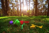 children's toys in the beautiful forest