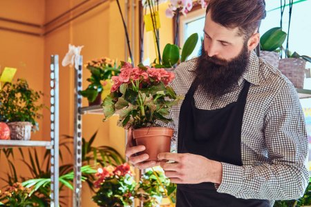 Professional male florist with beard and tattoo on his hand wearing uniform holds the pot with a bouquet of flowers in flower shop.