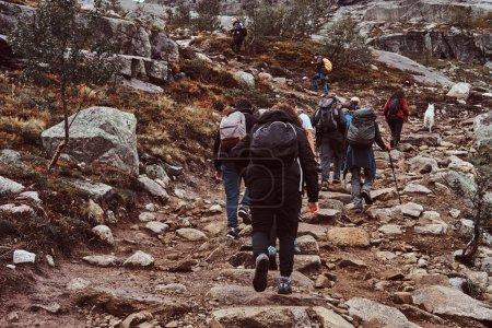Photo pour Groupe de personnes fait de la randonnée dans les montagnes de Norvège. Groupe de randonneurs avec sacs à dos, suivi en montagne . - image libre de droit