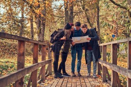 Photo pour Voyage, randonnée, concept d'aventure. Groupe de jeunes amis randonnée dans la forêt colorée d'automne, en regardant la carte et la planification de randonnée . - image libre de droit