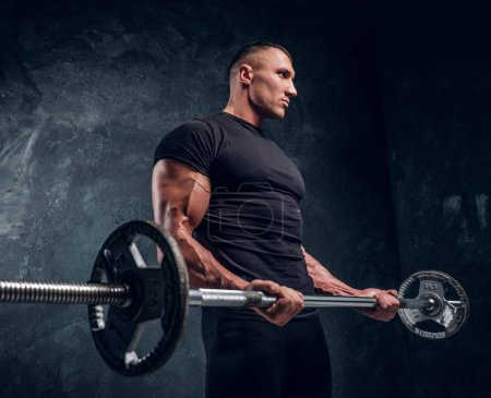 Photo for Studio shot of a muscular bodybuilder lifting a barbell on dark background. He looks away - Royalty Free Image