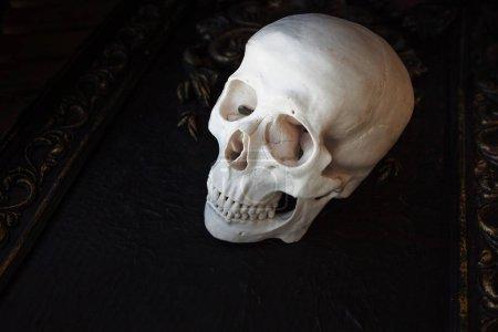 Photo pour Crâne humain sur fond de motifs. Fond noir, concept Halloween, espace libre - image libre de droit