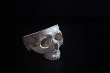 Photo pour Crâne ouvert. Crâne humain. Sans cervelle. Fond noir. Concept espace libre - image libre de droit