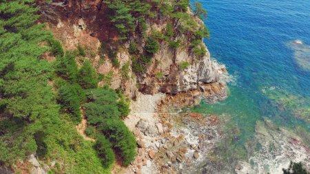 Foto de Hermosa vista de la península y una pequeña isla rocosa. Paisaje de playa con bosque de coníferas. Foto de aviones - Imagen libre de derechos