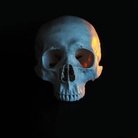 Photo pour Crâne. Crâne humain avec tonification de couleur. Fond noir. concept mystique, sombre, humeur apocalyptique - image libre de droit
