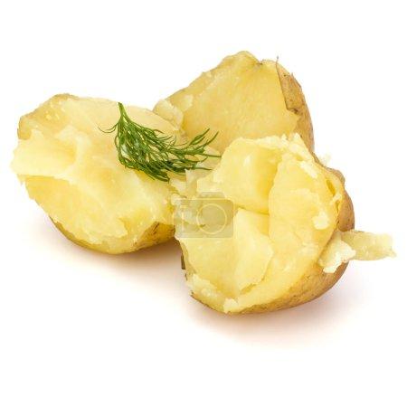 Photo pour Pommes de terre pelées bouillies isolées sur fond blanc découpe - image libre de droit