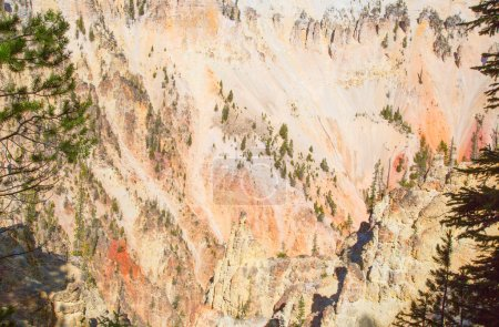 Canyon in Yellowstone National Park, Wyoming, USA