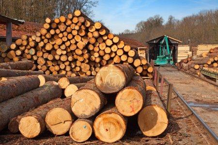Photo pour Empilement de nouveaux montants en bois dans la cour à bois - image libre de droit