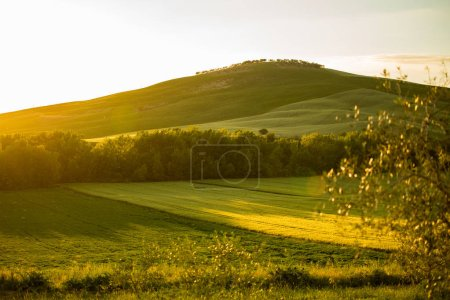 Photo for Landscape in Tuscany, Italy - Royalty Free Image