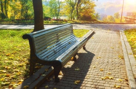 Photo for A bench in Autumn season with colorful foliage and trees. - Royalty Free Image