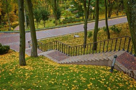 Photo pour Étapes de coffre en bois dans la forêt d'automne doré, sentier touristique. - image libre de droit