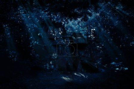 Photo pour Vieilles ruines dans la forêt nocturne - image libre de droit