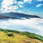 Green mountains in the clouds. Landscape view on green hills in fog at sunset