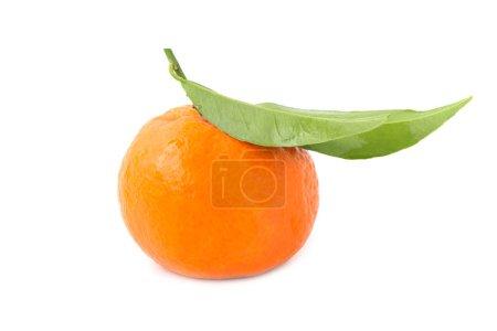 Photo pour Mandarin orange avec feuille verte isolé sur fond blanc - image libre de droit