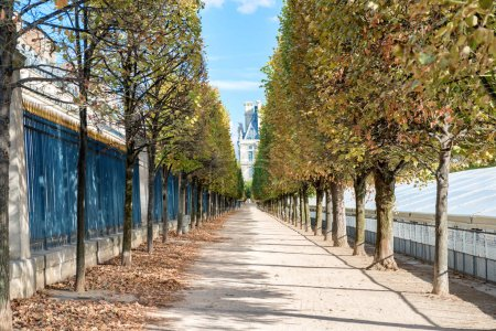 Photo for Long chestnut alley in Paris city park at autumn - Royalty Free Image