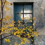Abandoned warehouse entrance on concrete wall, fac...