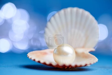 pearl in open shell on blue background
