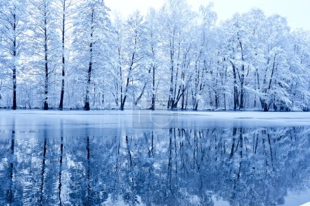 beautiful winter park with on shore of river