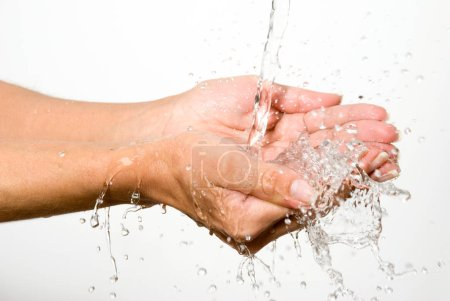 Photo for Cropped image of water pouring on woman hands isolated on white - Royalty Free Image