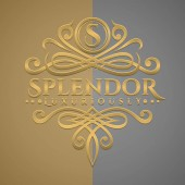 Classic Luxurious Letter S Logo with Embossed Gold Style Logo
