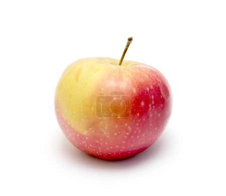 ripe apple on a white