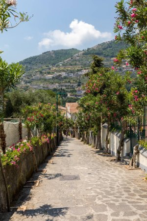 Photo for Ravello, Italy - June 16, 2017: A narrow steep street with blooming oleanders in Ravello. Amalfi Coast. Italy - Royalty Free Image