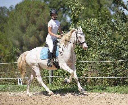 Photo pour Équitation fille sont la formation de son jeune cheval - image libre de droit