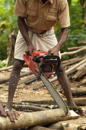 Photo pour Homme à tronçonneuse Exploitation forestière illégale et déforestation - image libre de droit
