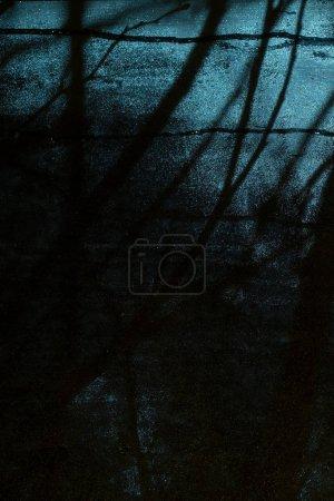 Photo pour Contexte pour la conception de fête d'Halloween. Des branches d'arbres en silhouette devant la fenêtre. Vue sombre et effrayante depuis la chambre - image libre de droit