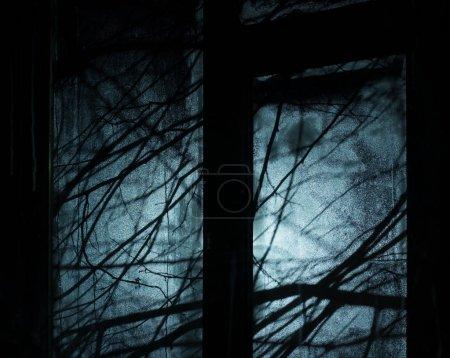 Photo pour Contexte pour la conception de fête d'Halloween. Des branches d'arbres en silhouette. Nuit sombre et lumière devant la fenêtre - image libre de droit