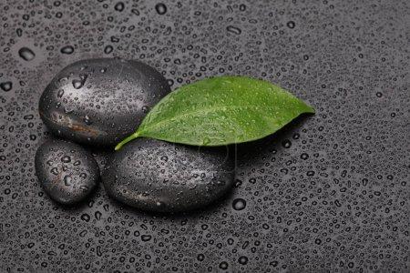 Photo pour Pierre noire et feuille verte avec des gouttes - image libre de droit