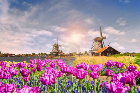 Photo pour Photo de moulin à vent en Hollande avec ciel bleu - image libre de droit
