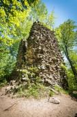 Ruins of Radosno Castle