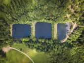 Ponds in Gluszyca city